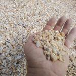 Handful of Pea Gravel